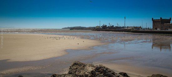 Essaouira Beach : La plage