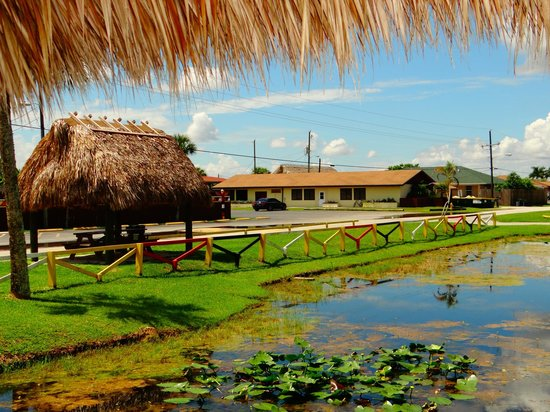 Miccosukee Indian Village: belle experience