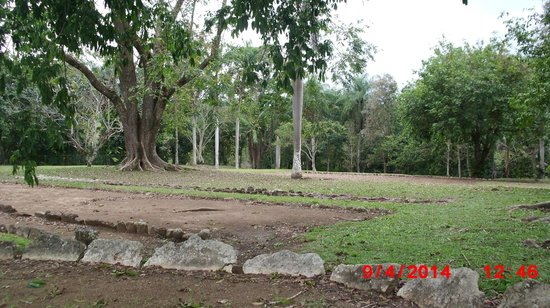 Parque Ceremonial Indigena de Caguana : Trees surrounding ball field