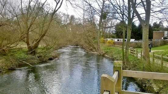 Wildwood - The Old Bear: RIVER OPPOSITE THE PUB