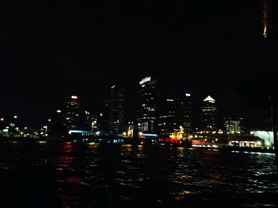 eBoats Tampa: A view of the Skyline from the water.
