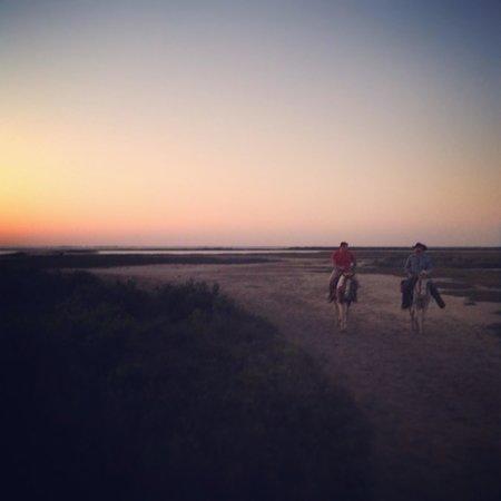S-n-G Horseback Riding : Horseback riding at sunset