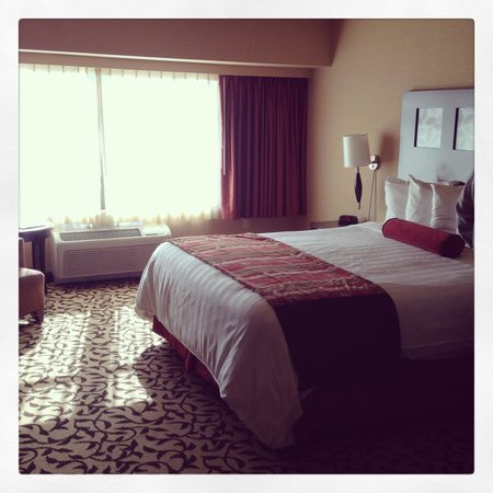 Silver Reef Hotel Casino Spa: King room non smoking