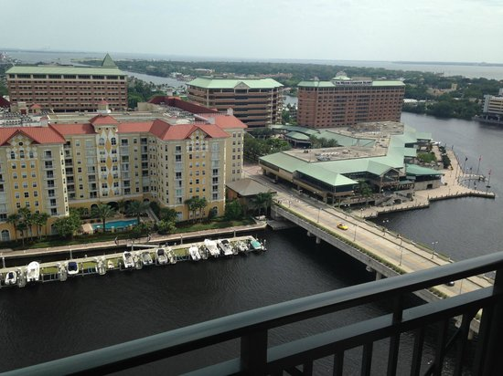 Tampa Marriott Waterside Hotel & Marina: View of Harbor Island from our room.