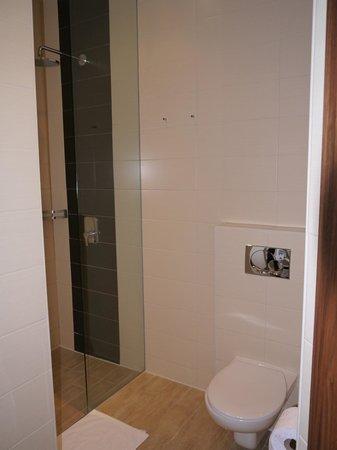 Hotel Vienna: Туалет