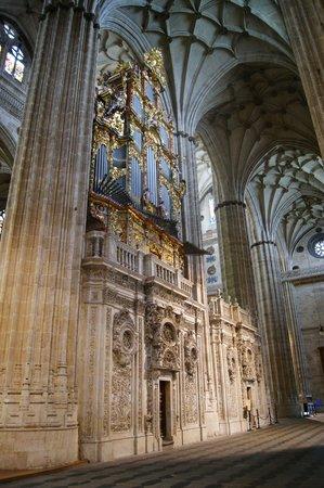 Catedral Nueva: órgano capilla Anaya