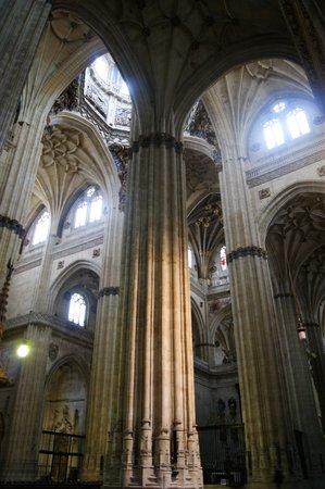Catedral Nueva: estilizado interior