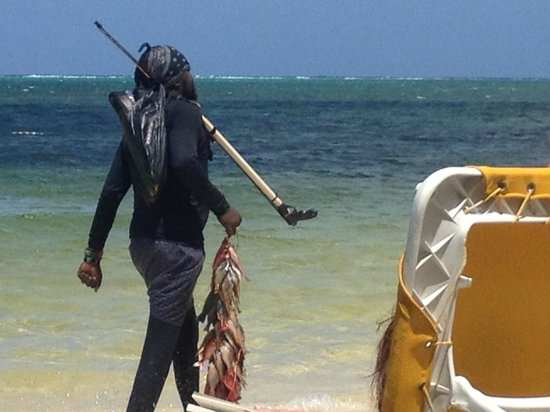 Iberostar Rose Hall Beach Hotel: Spear fisherman