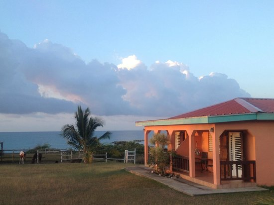 Hector's by the Sea : Morning sunrise at our casita