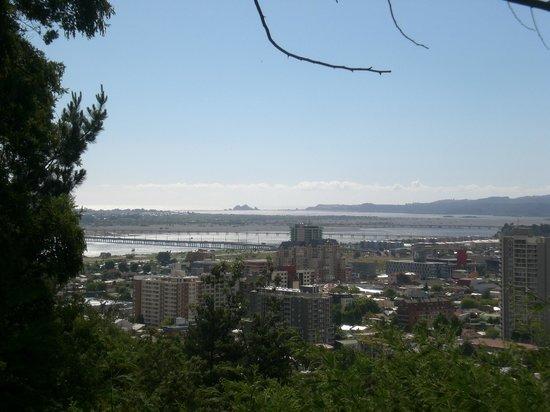 Cerro Caracol : vista