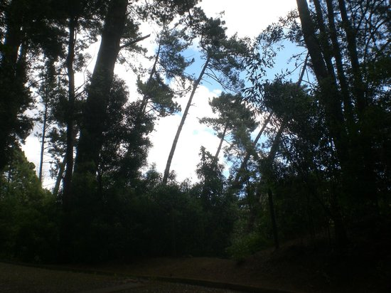 Cerro Caracol : parque