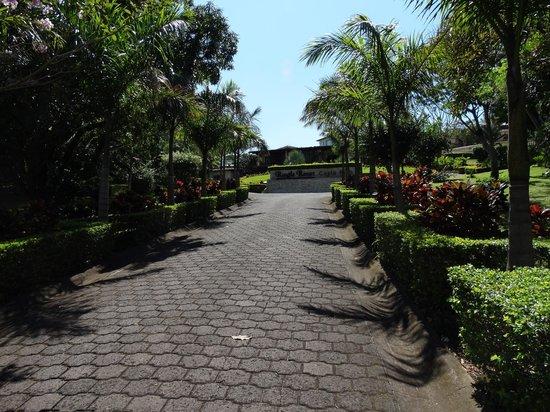 Ringle Resort Hotel & Spa: nice