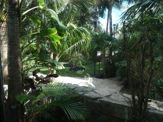 Grand Park Royal Cozumel: Foliage