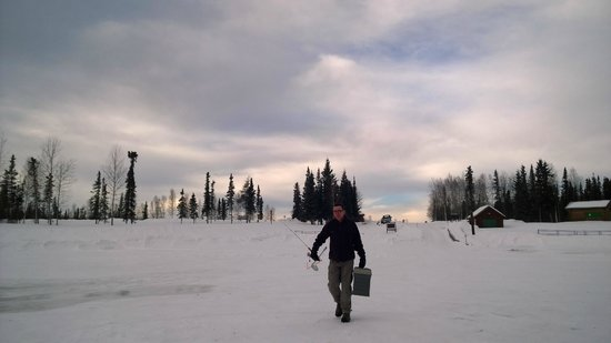 Alaska-Wildlife-Guide - Day Tours: Rainer