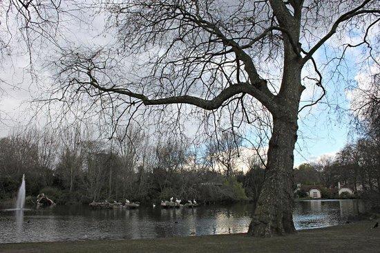 Parque de St. James: St. James's Park