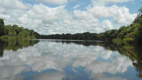Hotel Pirarucú: Paseo por el rió Yavarí