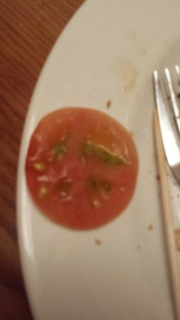 The Hungry Horse - Half Moon: Underripe tomato was the LEAST of our problems