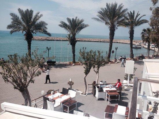 Aphrodite Restaurant: The view
