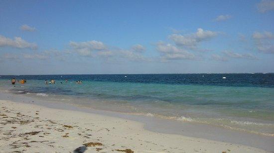 Hotel Eden: beach