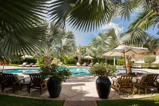 Villa del Mar: Pool and garden area