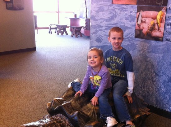 Cape Girardeau Conservation Nature Center: Alligator snapping turtle!