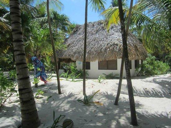 Bungalos Costa del Sol: cabin