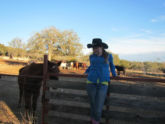 The Sugar & Spice Ranch : My daughter in front of the horse pen