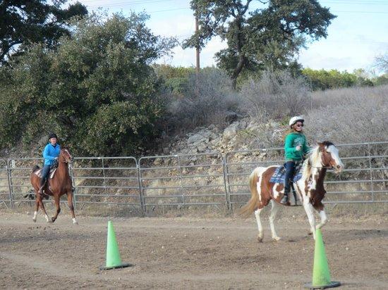 The Sugar & Spice Ranch : Horse games