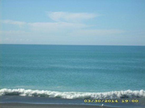 Quality Inn Napier Travel: View of Pacific Ocean acorss street from Quality Inn