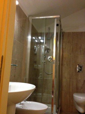 Hotel Benivieni: bagno