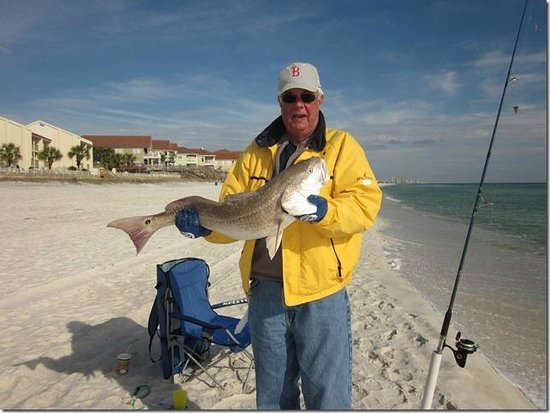 Beach wedding picture of latitude 29 condominium panama for Panama city beach pier fishing report