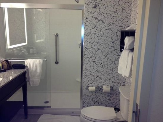 Hampton Inn Washington, D.C./White House: 5th floor bathroom - clean