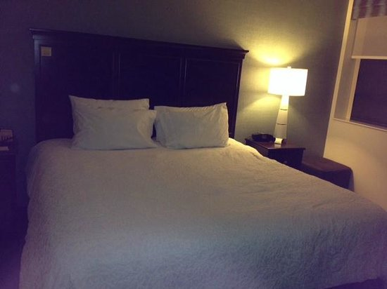 Hampton Inn Washington, D.C./White House: 5th floor room with king bed - sorry not best quality
