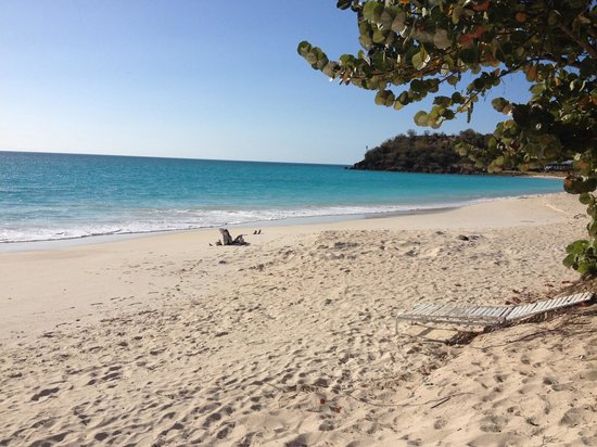Agave Landings : One Of the best beaches