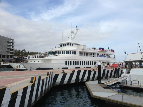 CaboRey Luxury Dinner Cruise: the caborey