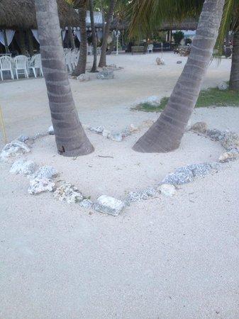 Coconut Cove Resort and Marina: Beach