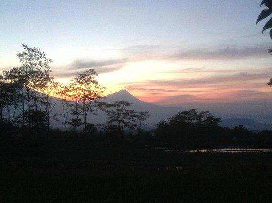Villa Sumbing Indah: le matin