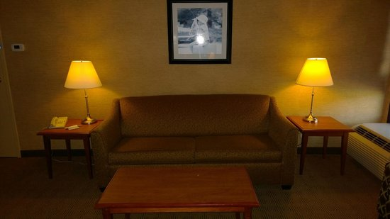 Hampton Inn Harrisburg East (Hershey Area): Couch in living room