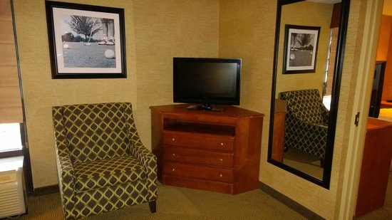 Hampton Inn Harrisburg East (Hershey Area): Living room