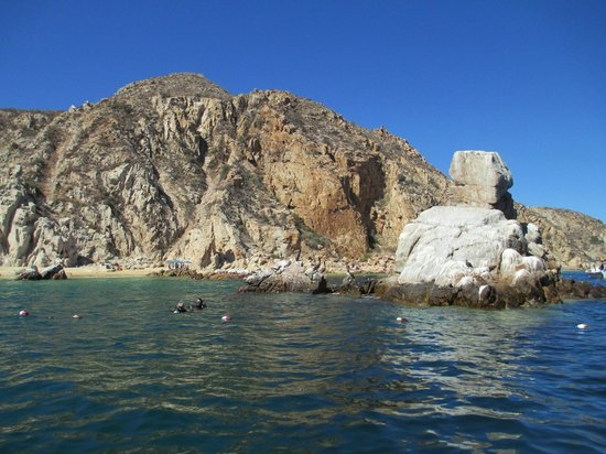 Roger's Glass Bottom Boat Tours: the rock we jumped from and area we snorkeled