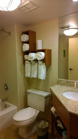 Hampton Inn Harrisburg East (Hershey Area): bathroom