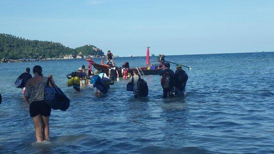 Ban's Diving Resort: diving at Ban's