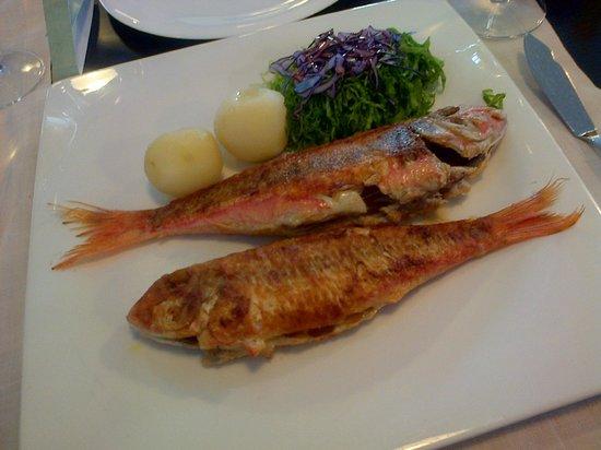 Casa Vicente: ración de salmonetes