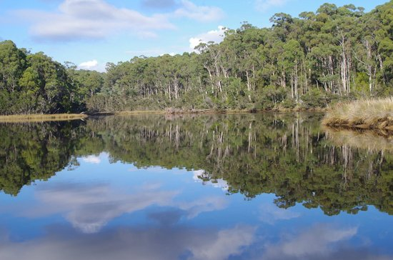 Ulverstone, Australië: Brilliant reflection