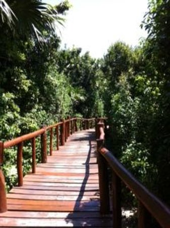 Grand Palladium Kantenah Resort and Spa: wooden walkway from our room to main area
