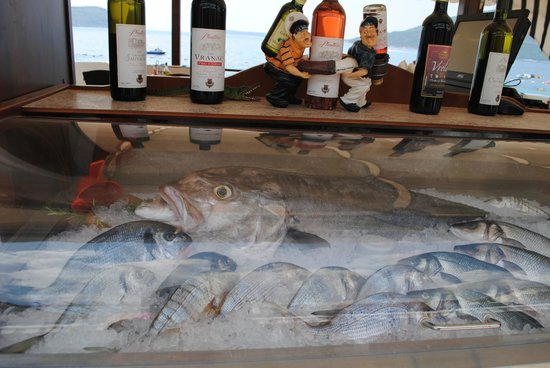 Splendido : Smješni ribari