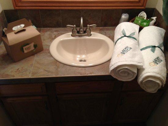 Aspen Winds on Fall River : Aspen Winds - Guest Room 5 Bathroom Area