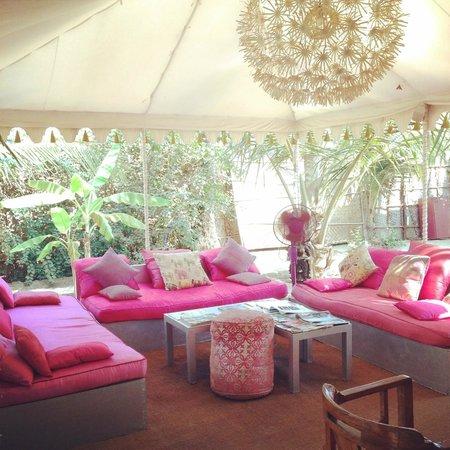 Amarya Shamiyana : Beautiful outdoor lobby.