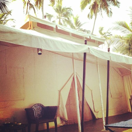Amarya Shamiyana: View of the tent.