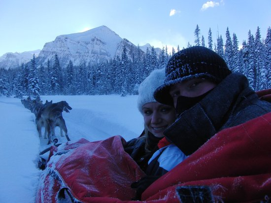 Kingmik Dog Sled Tours: It was cold but so worth it!